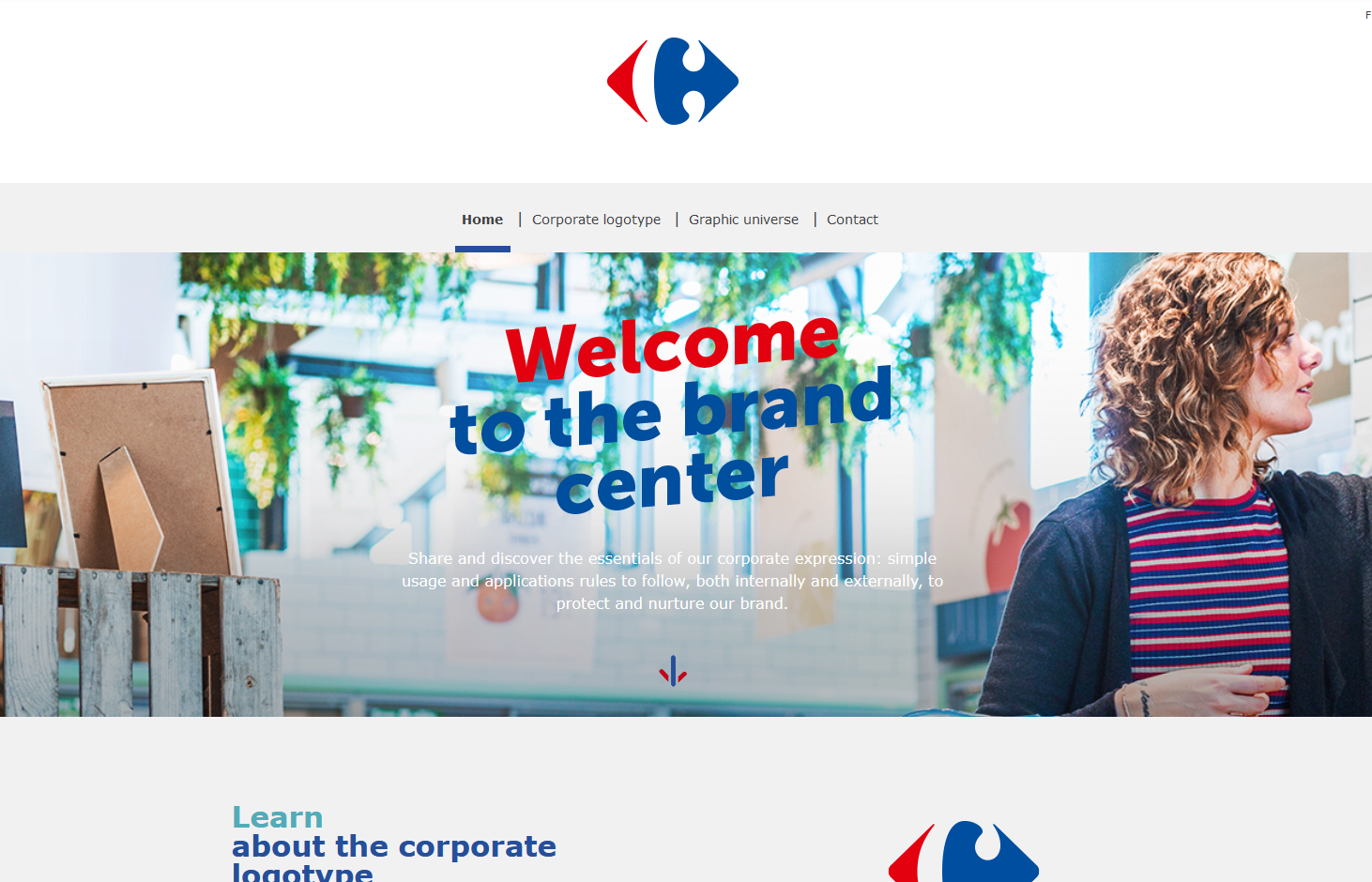 Carrefour's Brand Guide